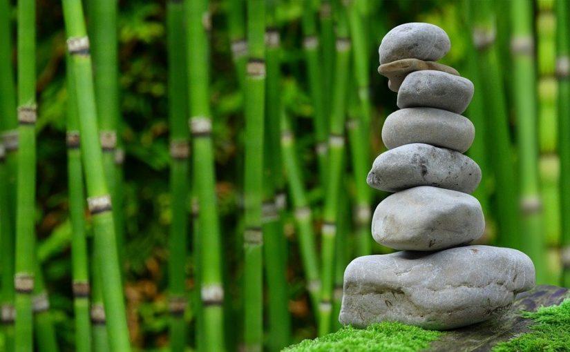 Ładny oraz zadbany zieleniec to zasługa wielu godzin spędzonych  w jego zaciszu w trakcie pielegnacji.